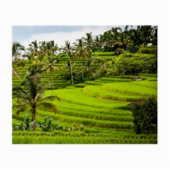 Rice Terrace Terraces Small Glasses Cloth (2 Side)