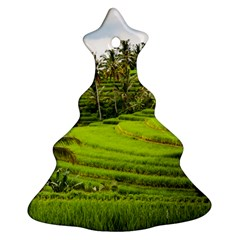 Rice Terrace Terraces Ornament (christmas Tree)