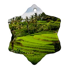 Rice Terrace Terraces Snowflake Ornament (two Sides)