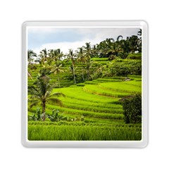 Rice Terrace Terraces Memory Card Reader (square)