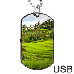 Rice Terrace Terraces Dog Tag Usb Flash (two Sides)