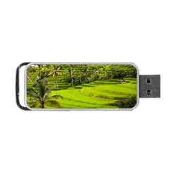 Rice Terrace Terraces Portable Usb Flash (two Sides)