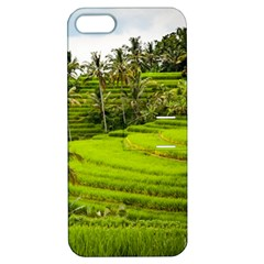 Rice Terrace Terraces Apple Iphone 5 Hardshell Case With Stand