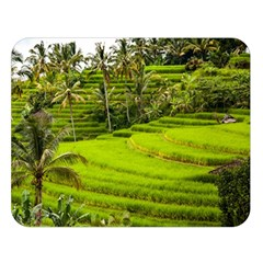 Rice Terrace Terraces Double Sided Flano Blanket (large)