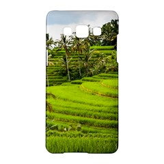 Rice Terrace Terraces Samsung Galaxy A5 Hardshell Case