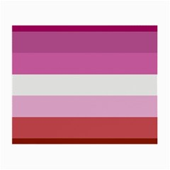 Lesbian Pride Flag Small Glasses Cloth (2 Side)