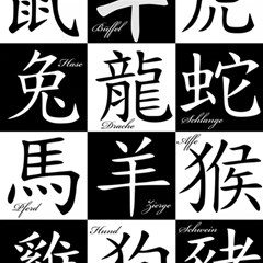 Chinese Signs Of The Zodiac Magic Photo Cubes