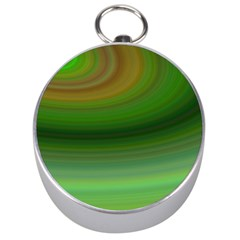 Green Background Elliptical Silver Compasses