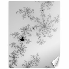 Mandelbrot Apple Males Mathematics Canvas 12  X 16