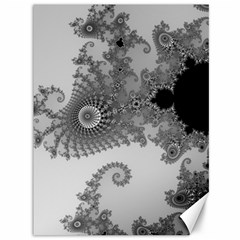 Apple Males Mandelbrot Abstract Canvas 36  X 48