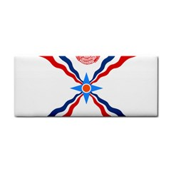 Assyrian Flag  Cosmetic Storage Cases