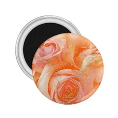 Flower Power, Wonderful Roses, Vintage Design 2 25  Magnets