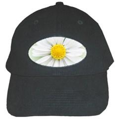 Art Daisy Flower Art Flower Deco Black Cap