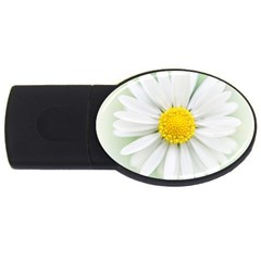 Art Daisy Flower Art Flower Deco Usb Flash Drive Oval (2 Gb)