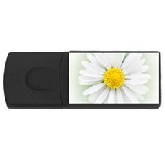 Art Daisy Flower Art Flower Deco Rectangular Usb Flash Drive