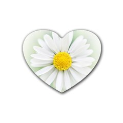 Art Daisy Flower Art Flower Deco Heart Coaster (4 Pack)