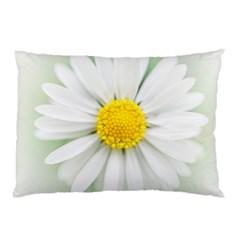 Art Daisy Flower Art Flower Deco Pillow Case