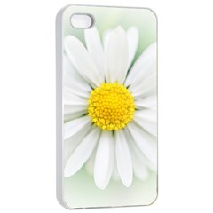 Art Daisy Flower Art Flower Deco Apple Iphone 4/4s Seamless Case (white)