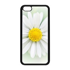 Art Daisy Flower Art Flower Deco Apple Iphone 5c Seamless Case (black)