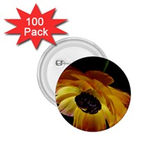 Ranunculus Yellow Orange Blossom 1 75  Buttons (100 Pack)