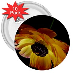 Ranunculus Yellow Orange Blossom 3  Buttons (10 Pack)
