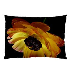 Ranunculus Yellow Orange Blossom Pillow Case (two Sides)