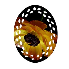 Ranunculus Yellow Orange Blossom Oval Filigree Ornament (two Sides)