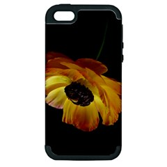 Ranunculus Yellow Orange Blossom Apple Iphone 5 Hardshell Case (pc+silicone)