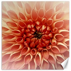 Dahlia Flower Joy Nature Luck Canvas 16  X 16