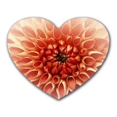 Dahlia Flower Joy Nature Luck Heart Mousepads