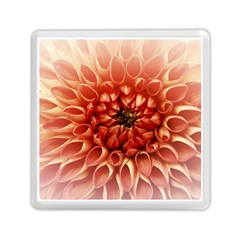 Dahlia Flower Joy Nature Luck Memory Card Reader (square)