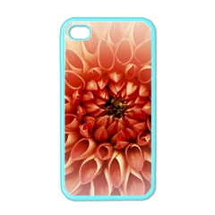 Dahlia Flower Joy Nature Luck Apple Iphone 4 Case (color)