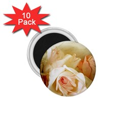 Roses Vintage Playful Romantic 1 75  Magnets (10 Pack)