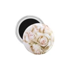 Pastel Roses Antique Vintage 1 75  Magnets