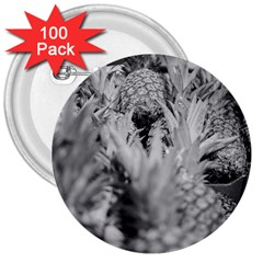 Pineapple Market Fruit Food Fresh 3  Buttons (100 Pack)