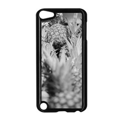 Pineapple Market Fruit Food Fresh Apple Ipod Touch 5 Case (black)