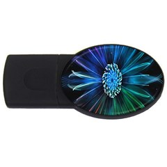 Flower Stigma Colorful Rainbow Animation Space Usb Flash Drive Oval (4 Gb)