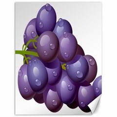 Grape Fruit Canvas 12  X 16
