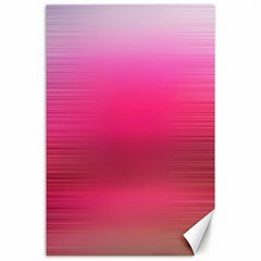 Line Pink Space Sexy Rainbow Canvas 24  X 36