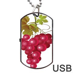 Red Fruit Grape Dog Tag Usb Flash (two Sides)