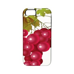 Red Fruit Grape Apple Iphone 5 Classic Hardshell Case (pc+silicone)