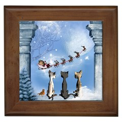 Christmas, Cute Cats Looking In The Sky To Santa Claus Framed Tiles