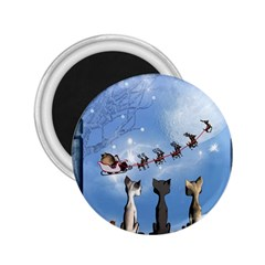 Christmas, Cute Cats Looking In The Sky To Santa Claus 2 25  Magnets