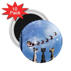 Christmas, Cute Cats Looking In The Sky To Santa Claus 2 25  Magnets (10 Pack)