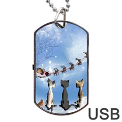 Christmas, Cute Cats Looking In The Sky To Santa Claus Dog Tag Usb Flash (one Side)