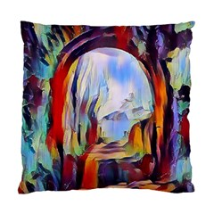 Abstract Tunnel Standard Cushion Case (two Sides)
