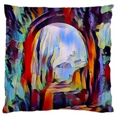 Abstract Tunnel Large Flano Cushion Case (one Side)