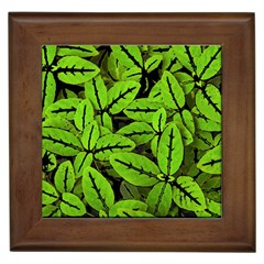 Nature Print Pattern Framed Tiles