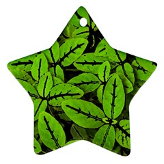 Nature Print Pattern Ornament (star)