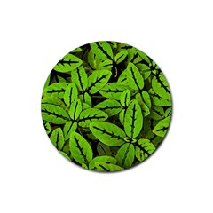 Nature Print Pattern Rubber Coaster (round)